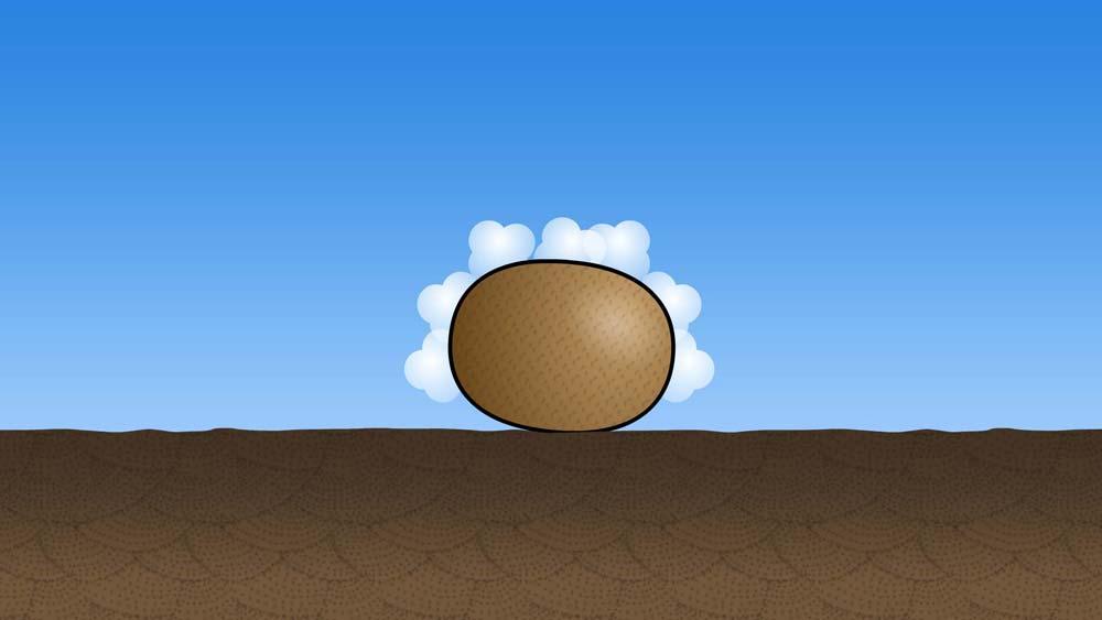 落ちたキウイフルーツからガスが出るアニメ