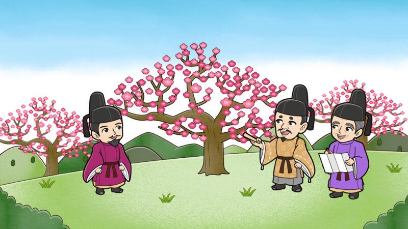 梅の木を選ぶ