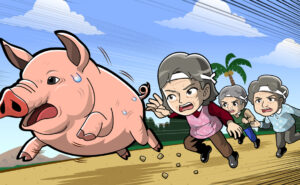 豚おいおばあさんのイラスト
