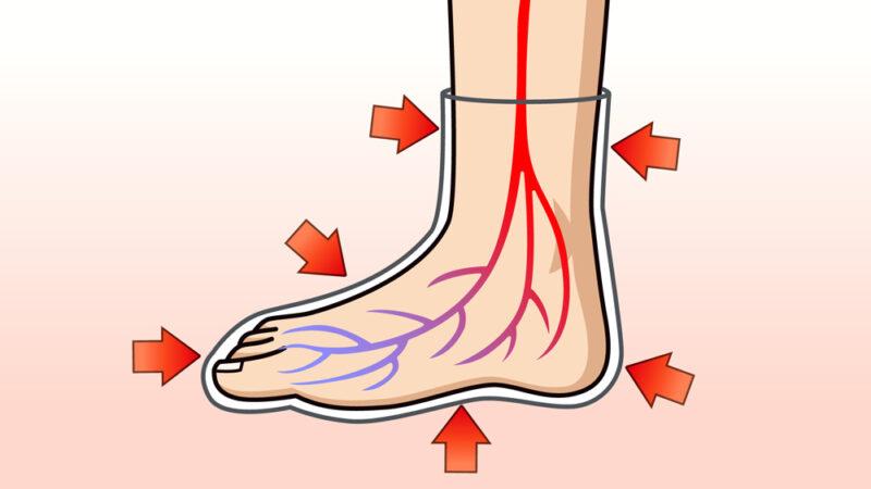 靴下と血流の関係性説明用